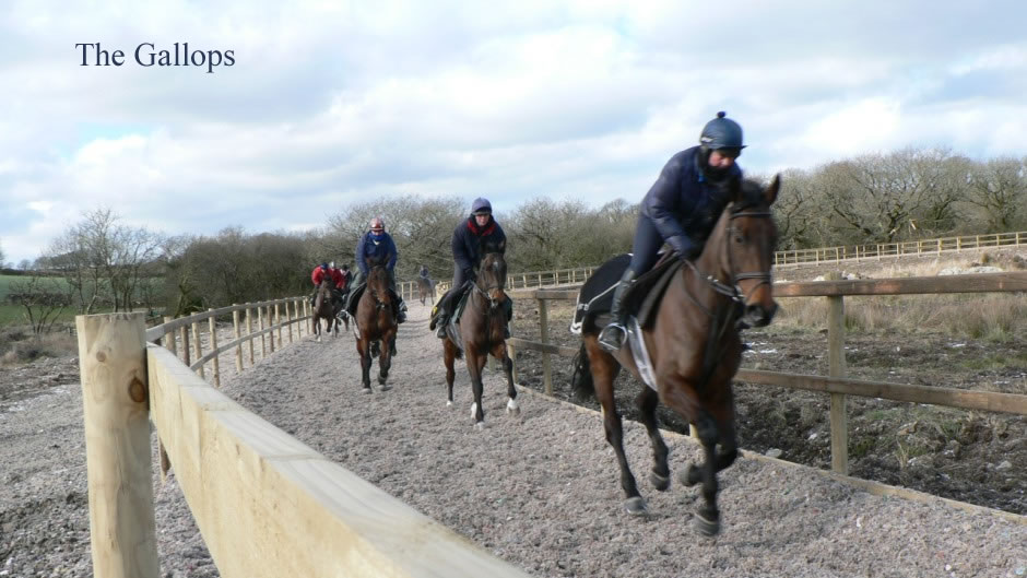 The Gallops